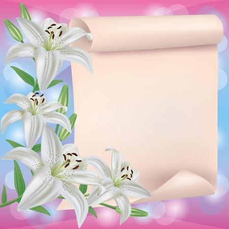 cenefas flores: Saludo o tarjeta de invitación con blancas flores de lis y la hoja de papel - el lugar de texto