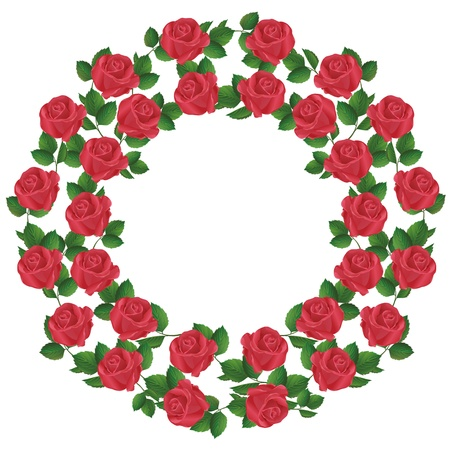 red rose border: Ornament of red roses, element of design, isolated on white background. Vector illustration