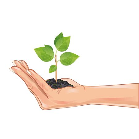 Hand holding a green plant, isolated on white background, element eco design. Vector illustration Vector
