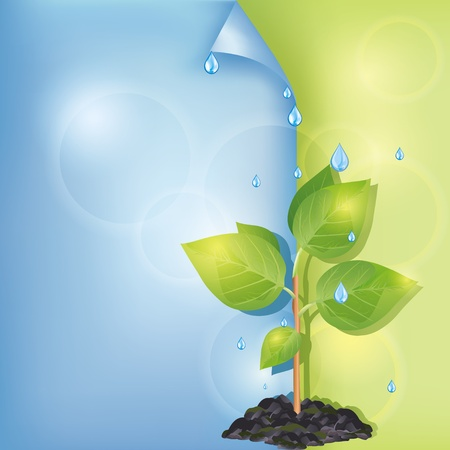 Eco background blue-green with plant and water drops, place for text, vector illustration