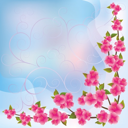 Sakura blossom - Japanese cherry tree background, greeting or invitation card Vector