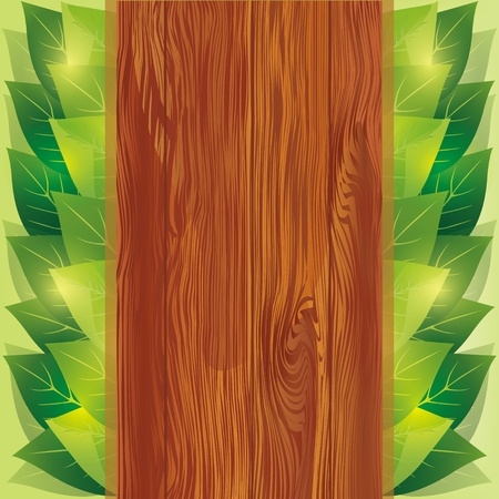 Background with fresh green leaves and wooden board - place for text, vector illustration Vector