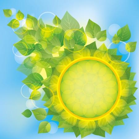 新鮮な緑の抽象的なエコ背景の葉、バブルとテキスト、ベクトル図の円の場所の装飾