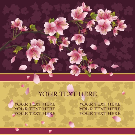 asian gardening: Background with sakura blossom - Japanese cherry tree with flying petals, place for text.