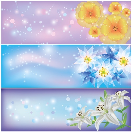 Set of horizontal glowing floral banners with California poppy, lily and exotic flowers  Greeting or invitation card  Vector illustration Vector