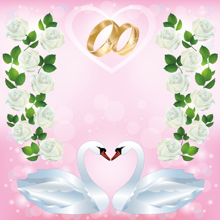 swans: Light pink wedding greeting or invitation card with two white swans, wedding rings, decorated ornament of white roses. Place for text. Vector illustration