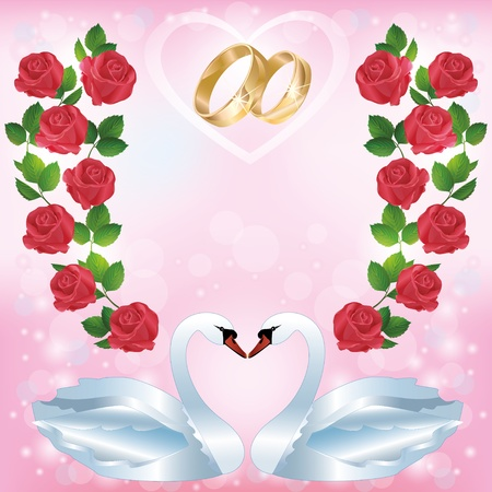 matrimony: Wedding greeting or invitation card with pair of white swans, wedding rings, decorated ornament of red roses. Place for text. Vector illustration