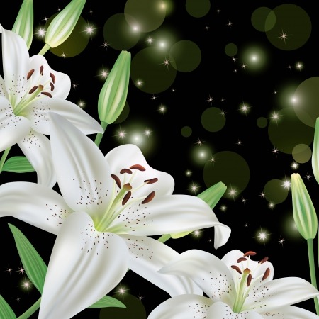 White lily flower background, greeting or invitation card Stock Vector - 13600568