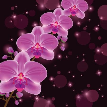 fraue: Gruß-oder Einladungskarte mit exotischen Blume lila Orchidee, dunkle Luxus blumigen Hintergrund, dekoriert Sterne und Kreise.