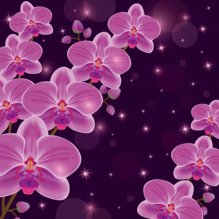 Greeting or invitation card with exotic flowers purple orchids, dark luxury floral background, decorated stars and circle.  Vector