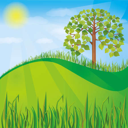 cartoon forest: Summer or spring nature background with green tree and grass, natural landscape, vector illustration