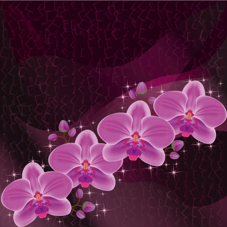 Invitation or greeting card dark red with exotic flower purple orchid, luxury floral background with decorative elements