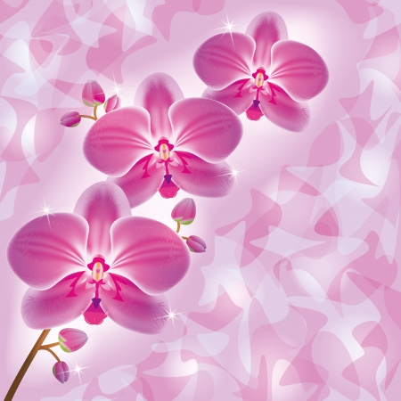 flower border pink: Invitation or greeting card with flower purple orchid, luxury floral background in retro or grunge style. Place for text