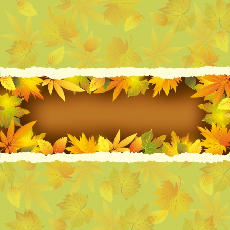 Wallpaper background with autumn leaves in shape of frame. Place for text.  Vector