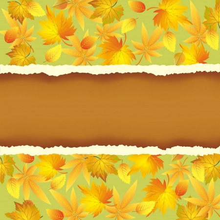 Wallpaper background with autumn leaves pattern. Place for text.  Vector