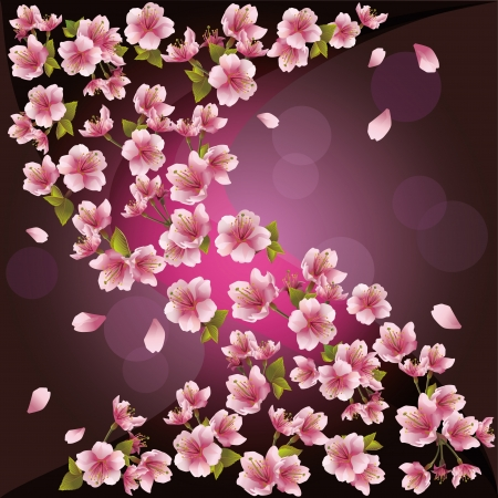 Background with pink sakura blossom - Japanese cherry tree, greeting or invitation card.  Illustration