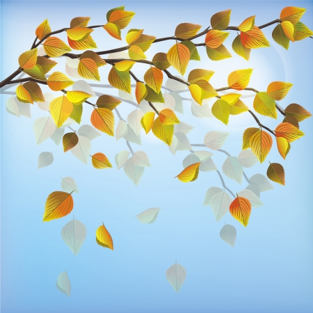 Autumn tree with leaf fall, beautiful light nature background, place for text. Vector illustration. Stock Vector - 14689122