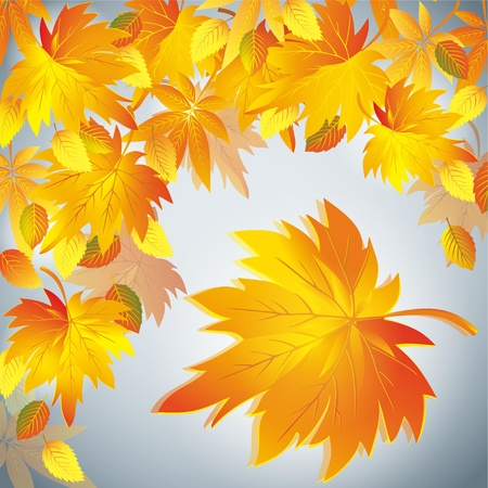 autumn scene: Autumn leaf fall background with yellow leaf - place for text, beautiful grey nature background. illustration.