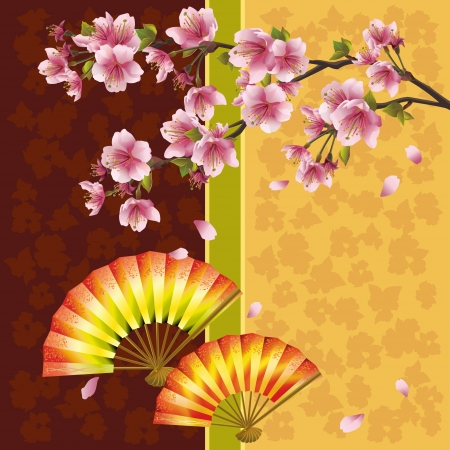 summer in japan: Japanese background with sakura blossom- Japanese cherry tree and two fans, symbol of oriental culture