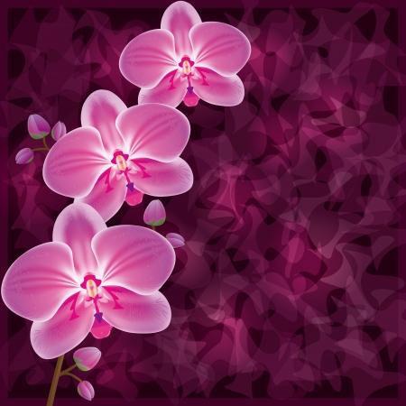 Achtergrond met bloemen orchidee paars. Uitnodiging of wenskaart in grunge stijl. Vector illustratie.