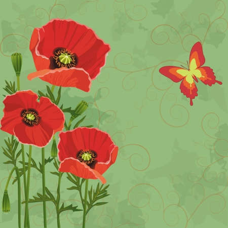 red poppy: Floral vintage background green with flowers poppies and butterfly  Invitation or greeting card   Illustration