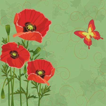 amapola: Verde floral del fondo de la vendimia con las amapolas flores y mariposas. Invitaci�n o tarjeta de felicitaci�n. Vector illustartion