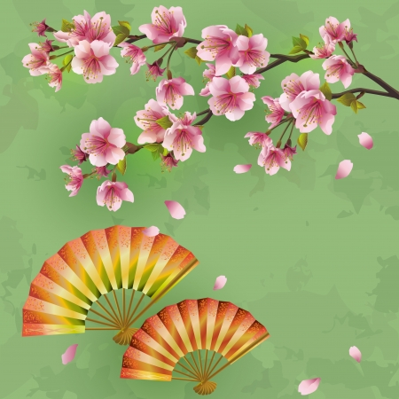 japanese style: Japanese background with sakura - Japanese cherry tree and fans  Vintage or grunge style  Place for text  Illustration