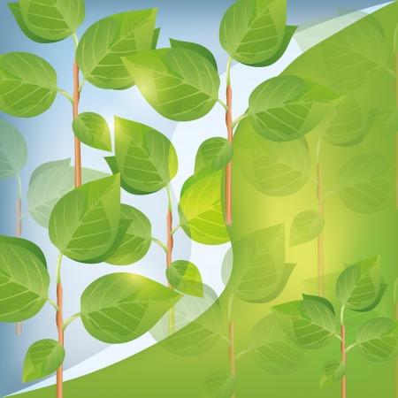 Eco fundo abstrato com plantas, lugar para texto, ilustração vetorial