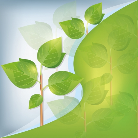 agriculture wallpaper: Eco background abstract with plant, place for text, vector illustration