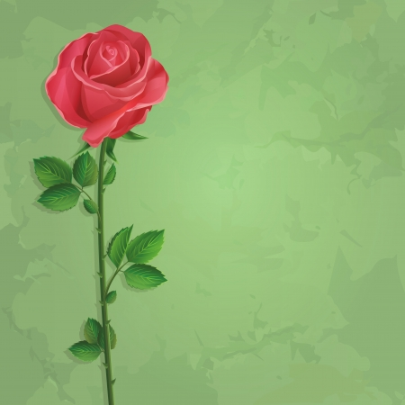 old wallpaper: Vintage floral green background with red flower rose. Invitation or greeting card