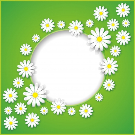 Abstract creative spring or summer background with flower camomile  Vector illustration Illustration