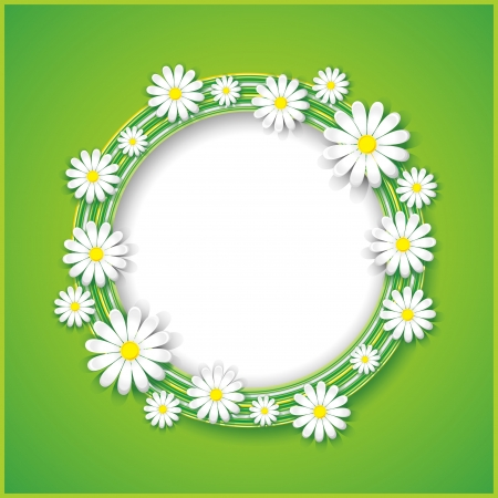 Spring or summer abstract background with flower camomile, floral frame  Vector illustration Vector