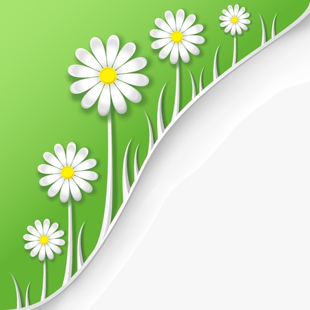 Abstract creative spring or summer background with flower camomile and grass  Vector illustration Vector