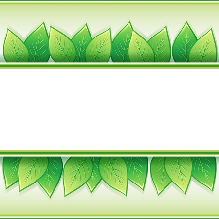 Eco background with fresh green leaves and white paper - place for text,  illustration Vector
