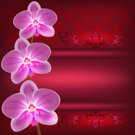 Greeting or invitation card with flower orchid, red glowing luxury background. Place for text illustration Vector