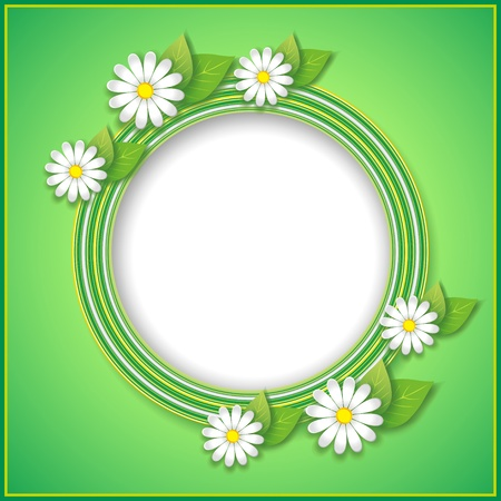 Spring or summer abstract green background with flower camomile. Vector illustration Vector