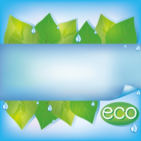 Eco blue background with fresh green leaves, water drops and paper - place for text, vector illustration Vector