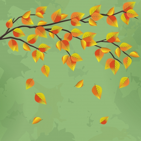 Vintage autumn background with tree branch and leaf fall, vector illustration Vector