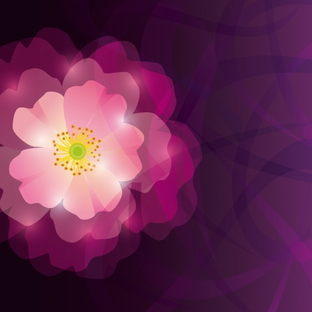 Abstract greeting or invitation card with purple flower  Place for text  Vector illustration 일러스트