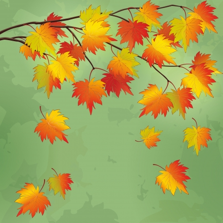 Vintage autumn background with branch of maple tree and leaf fall, vector illustration