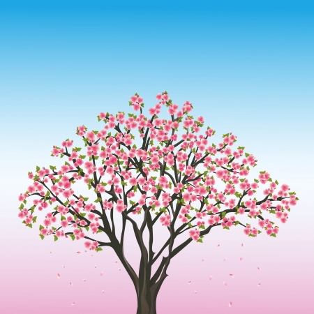 Beautiful spring blue- pink background with sakura - japanese cherry tree, vector illustration Vector