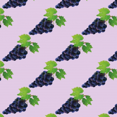 Background seamless pattern with black grape, vector illustration Vector