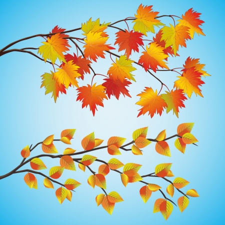 golden apple: Set of autumn tree with colorful leaves, isolated on blue background  Vector illustration Illustration