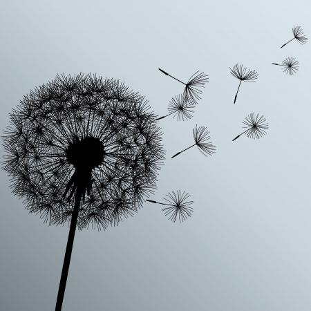 灰色の背景ベクトル イラスト上に黒の花タンポポ