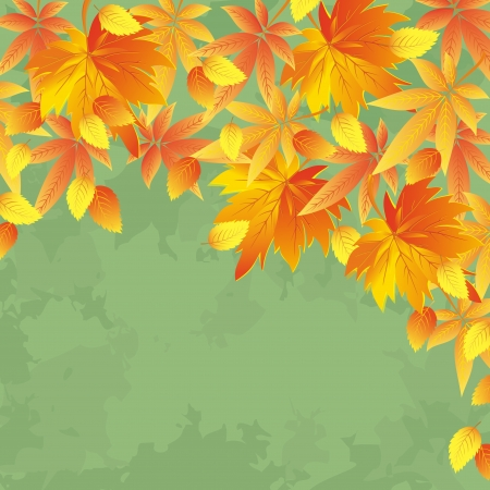 place for text: Vintage autumn background with yellow and red leaves  Nature background, leaf fall  Place for text illustration  Illustration