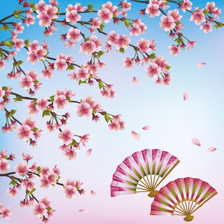 open fan: Beautiful decorative Japanese background with sakura blossom  - Japanese cherry tree and two open fans  Vector illustration