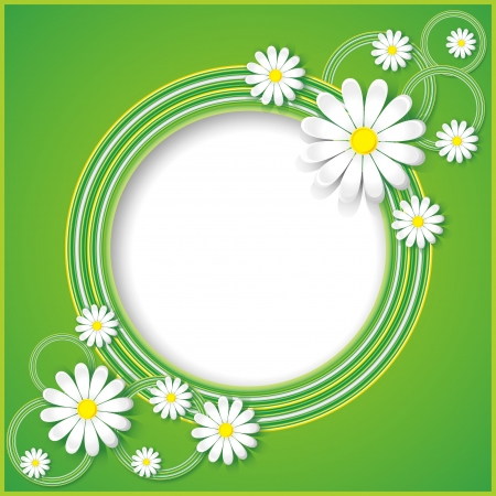 Creative abstract  spring background with flowers chamomiles  Floral frame  Vector illustration