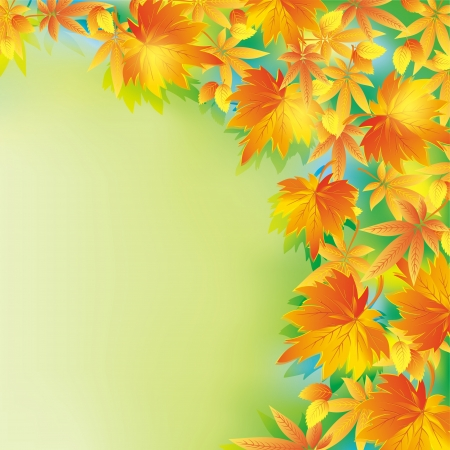 Beautiful autumn background with yellow and red leaves  Nature background, leaf fall  Place for text  Vector illustration  Vector