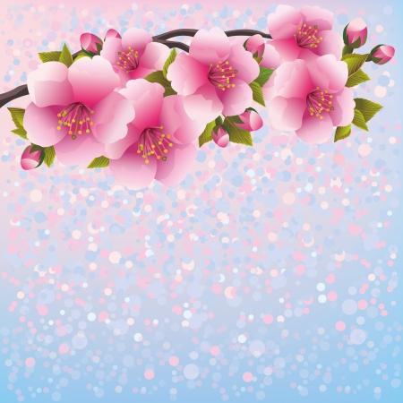 Lila Hintergrund mit sakura blossom - japanischer Kirschbaum, Gruß-oder Einladungskarte Floral background, im japanischen Stil Vektor-Illustration Standard-Bild - 21832989