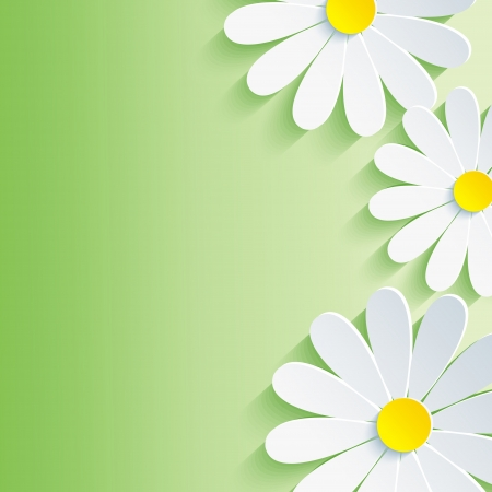 Beautiful spring abstract background, 3d flower chamomile  Vector floral background  Vector illustration